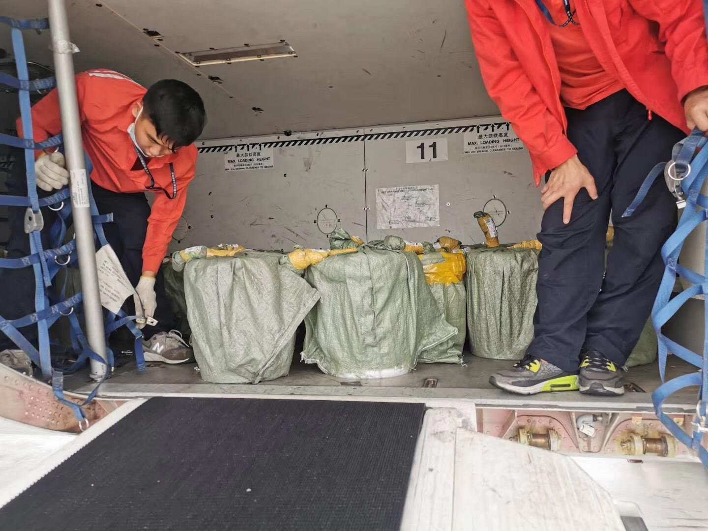 阿克苏生鲜蔬果空运 美容仪器空运价格 确保货物交接